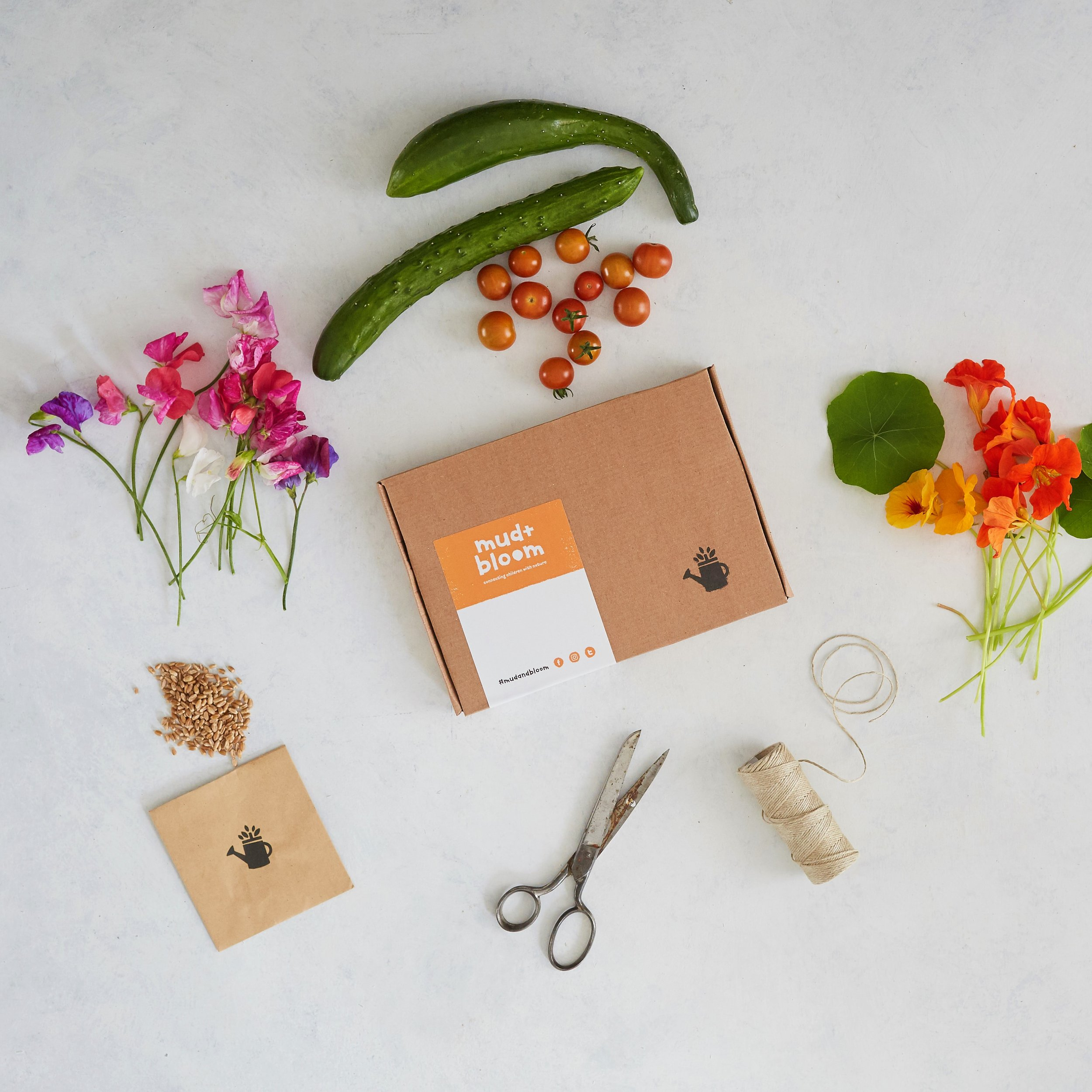 Annual Craft/Garden Subscription: MudnBloom