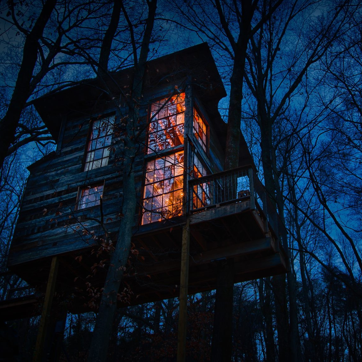 treehouse at night.jpg