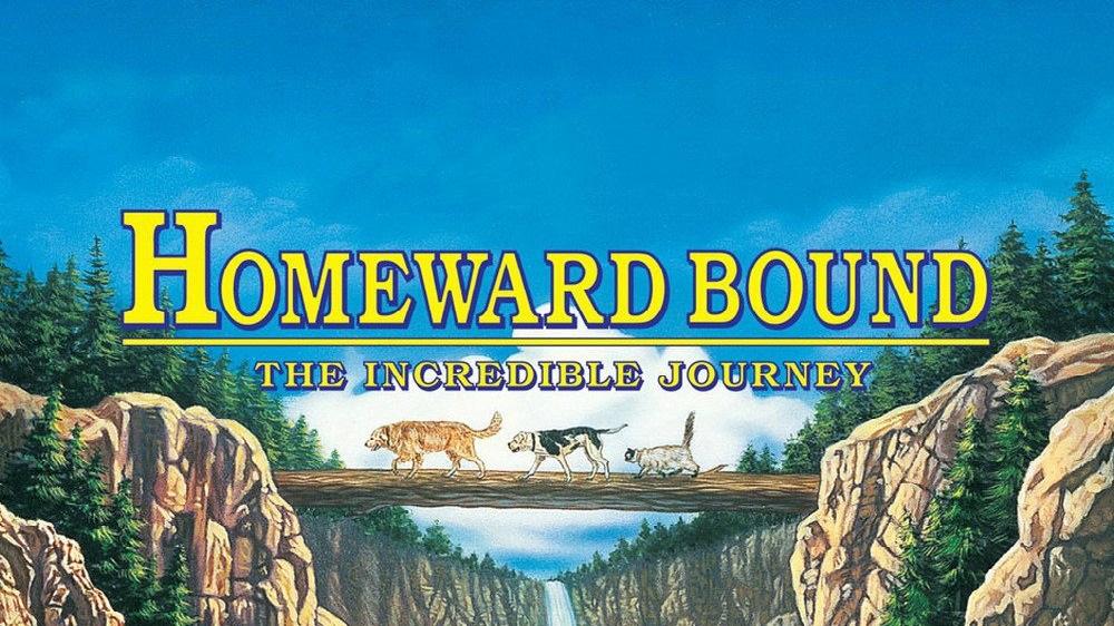 homeward-bound-the-incredible-journey-5850451a95415.jpg