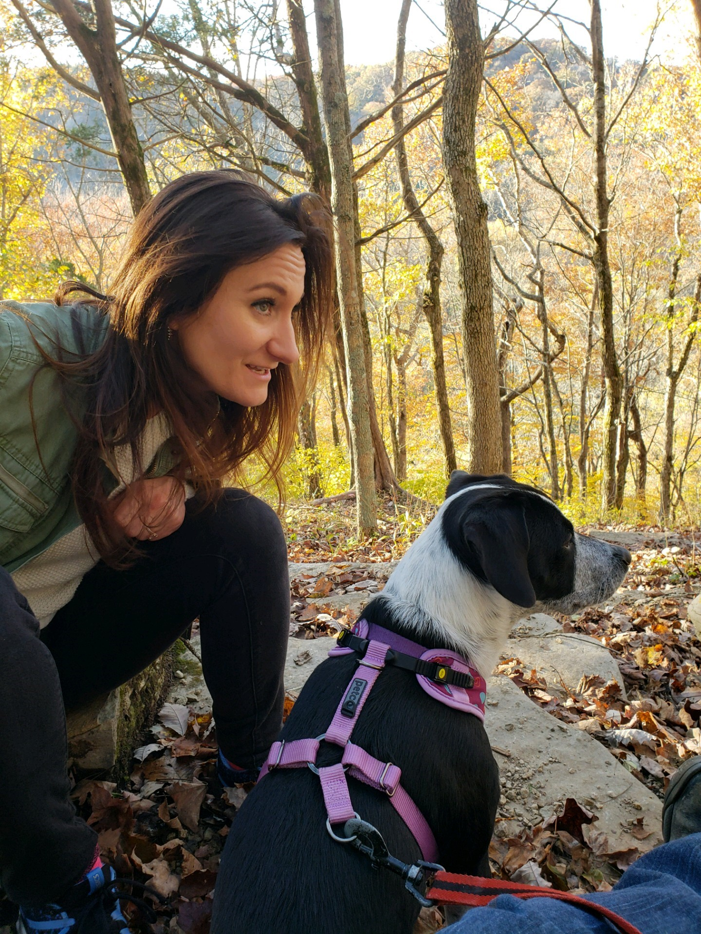 Therapy_Dog_Hike.jpg