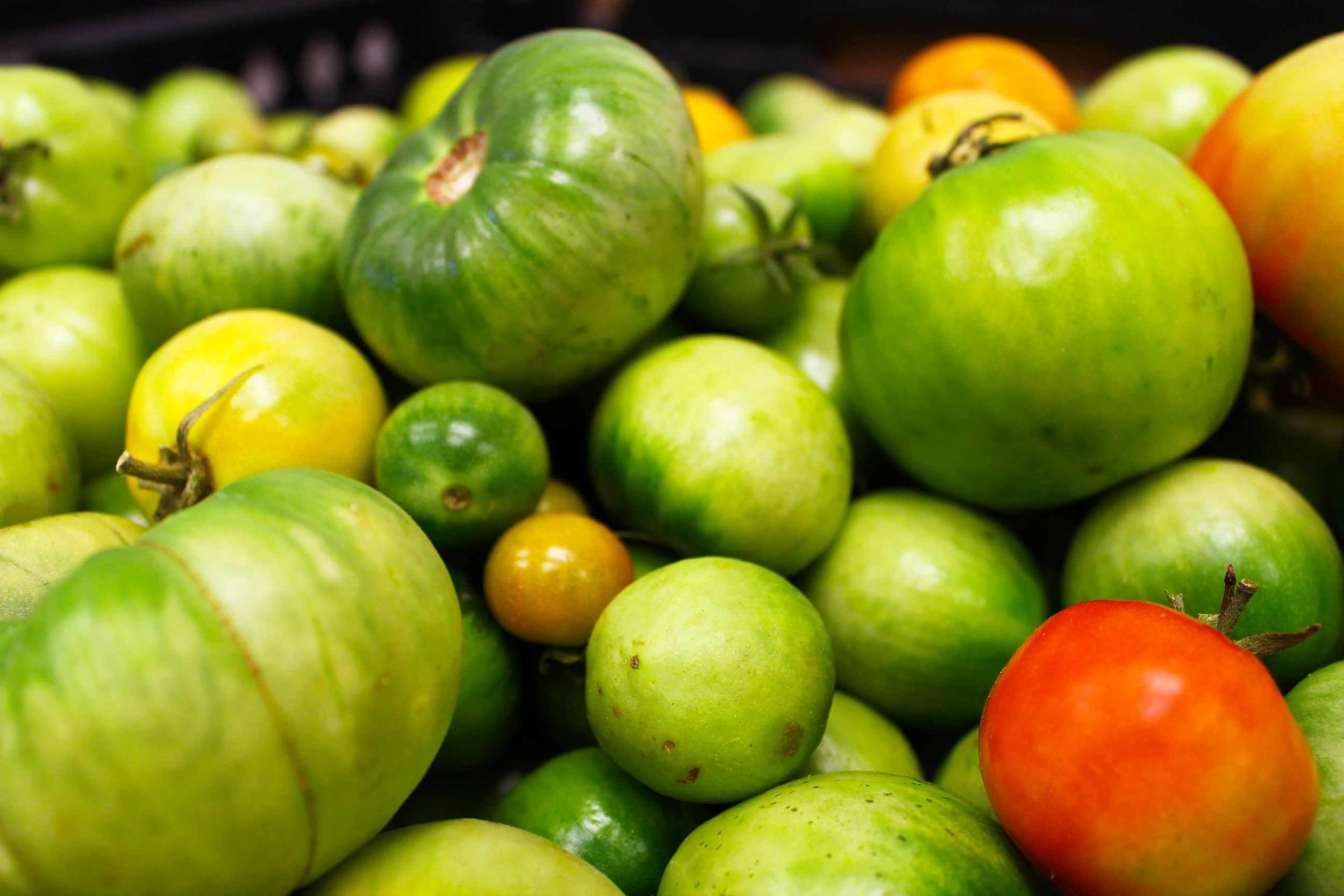 IMG_5626_Mtuccis_Tomatoes.jpg