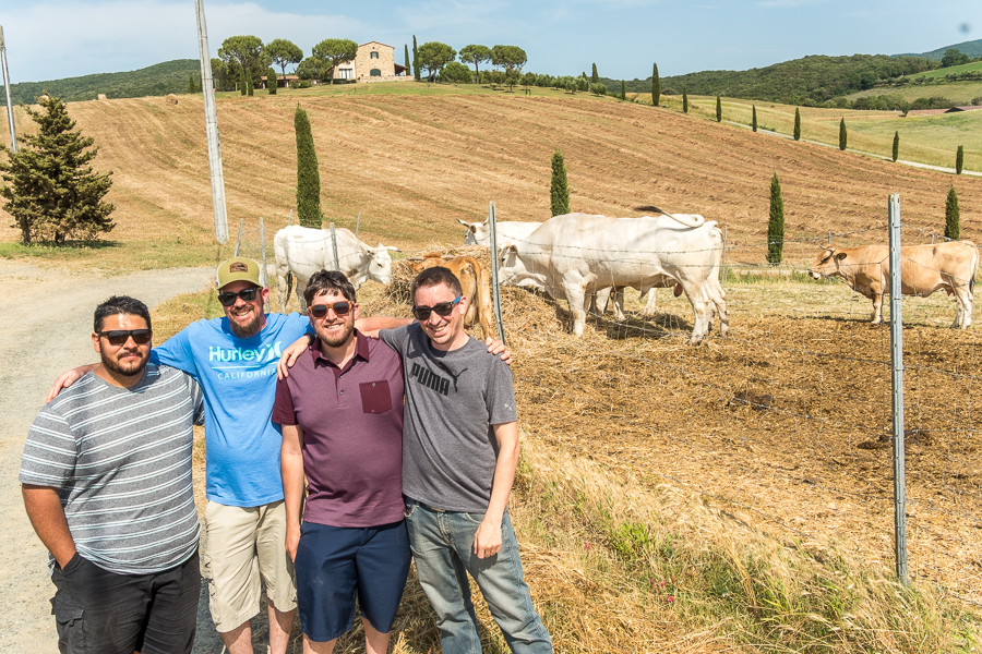 Damian, Cory, Shawn and John in Tuscany with our friends, the Chianina.