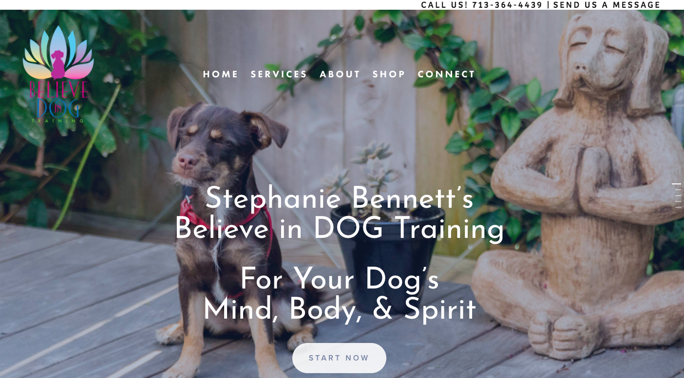 Believe in Dog Training