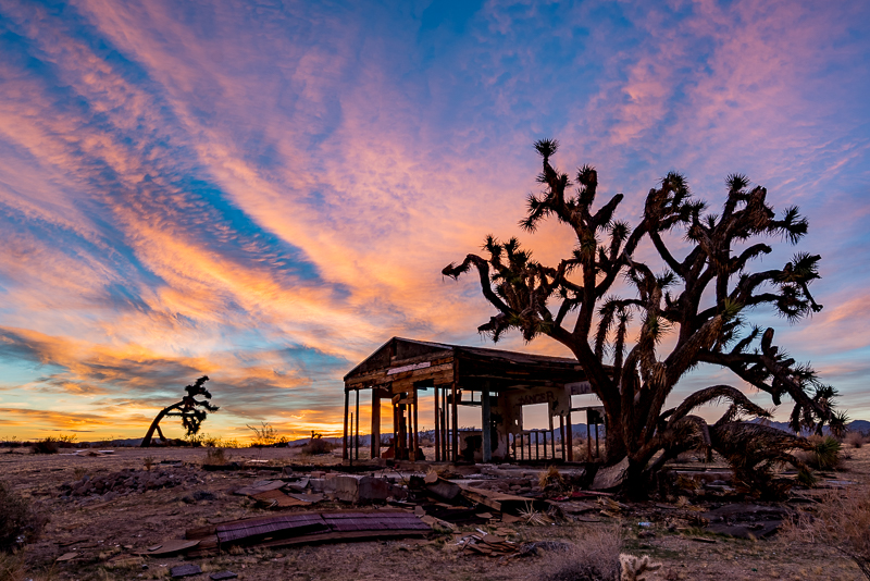 Joshua Tree B&B Photography Workshops
