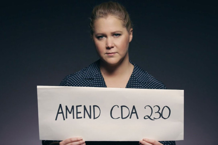 Amy Schumer is one of many celebrities who have stepped forward to show their support for amending the CDA.