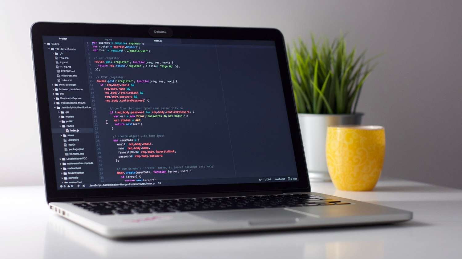 Software Developers & Potential Viewers -