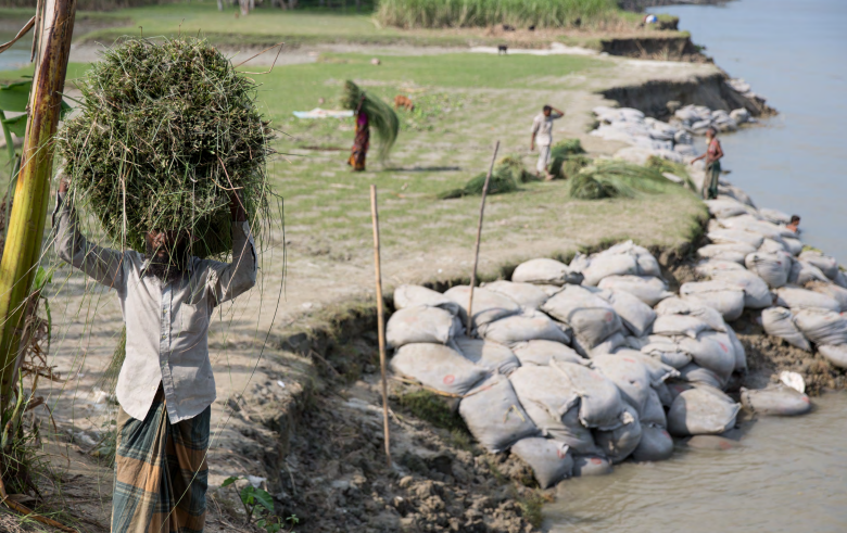 PHOTO: This community in Sirajganj, Bangladesh, is affected by river erosion. Many people were displaced several times due to the river erosion. © IOM 2016 (Photo: Amanda Nero)