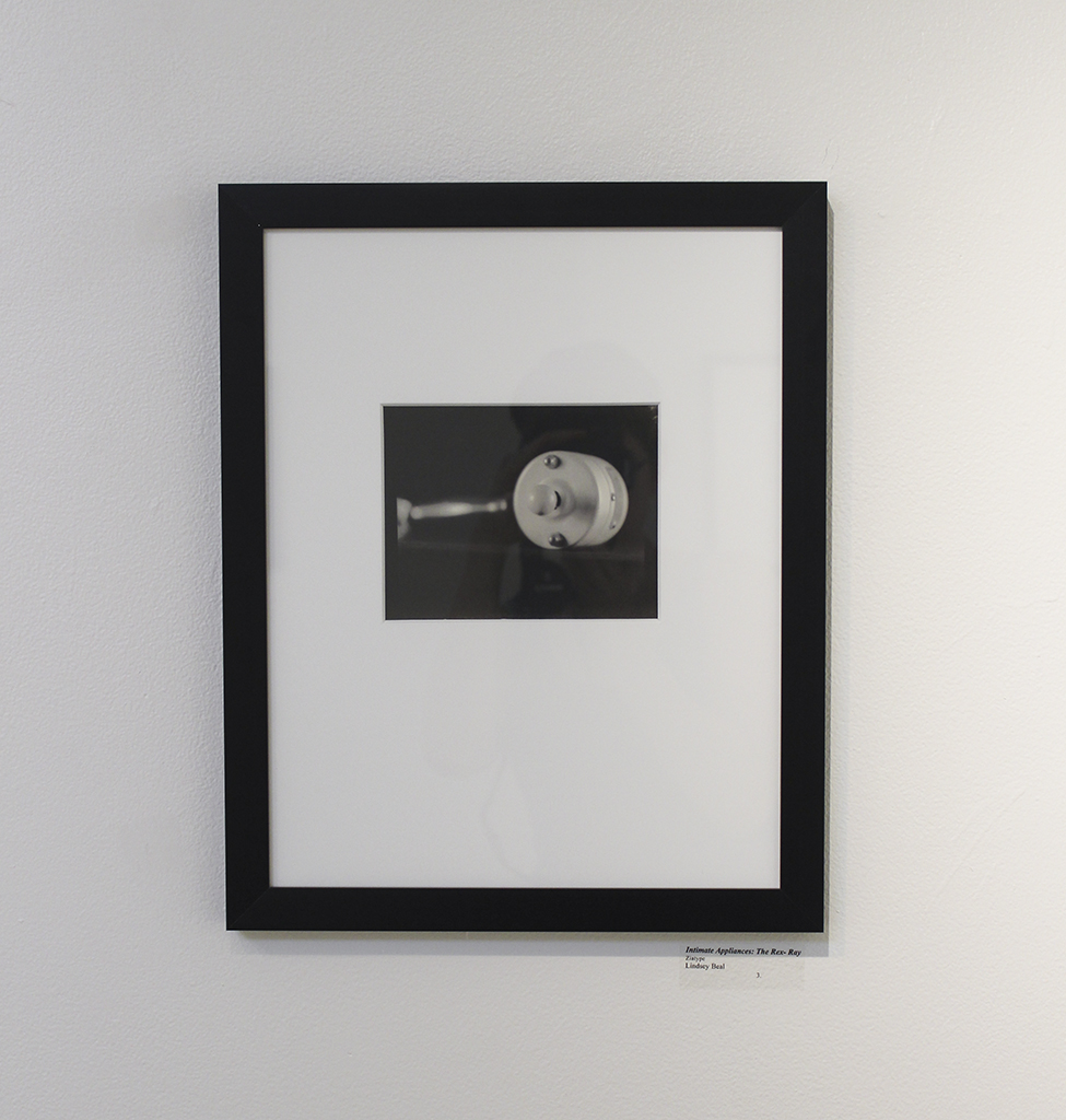 Intimate Appliances (Framed)