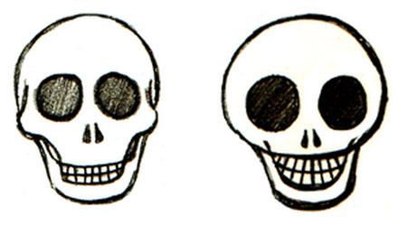 学习如何绘制头骨