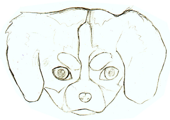 Learn how to draw a puppy with Thaneeya