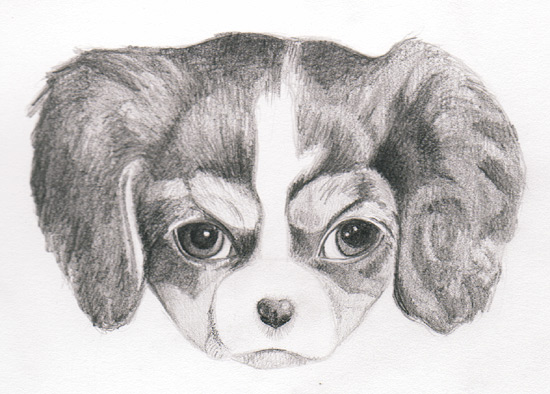 Learn to draw a puppy with Thaneeya