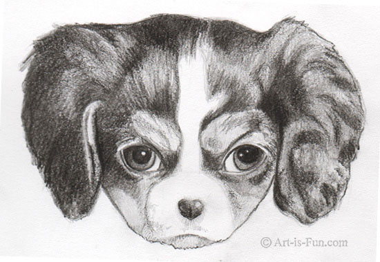How to draw a puppy with Thaneeya