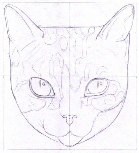 Drawing a cat with Thaneeya