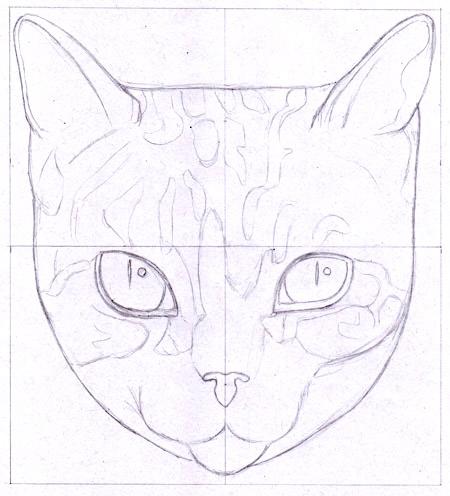 与thaneeya绘制一只猫