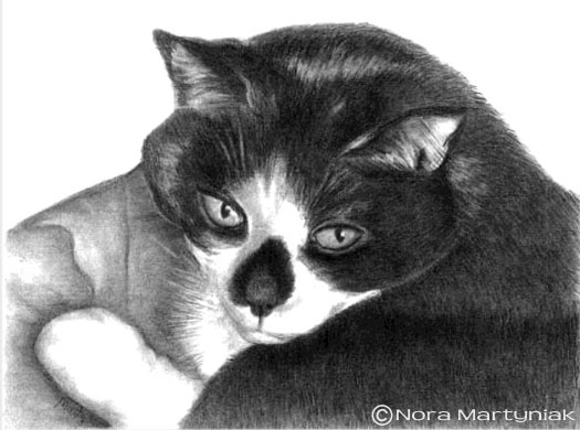 Draw Realistic Pets, Student Example