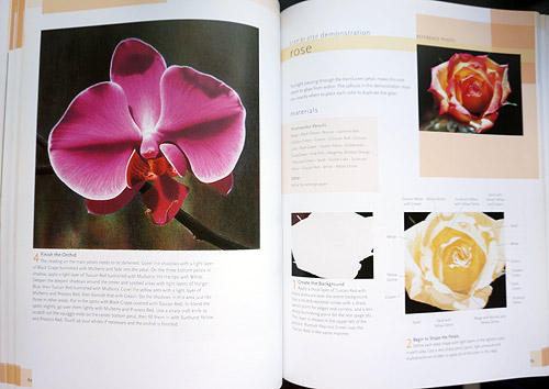 On the left you can see her finished colored pencil painting of an orchid - hard to believe that's not a photo! On the right you can see the begining of her rose lesson.
