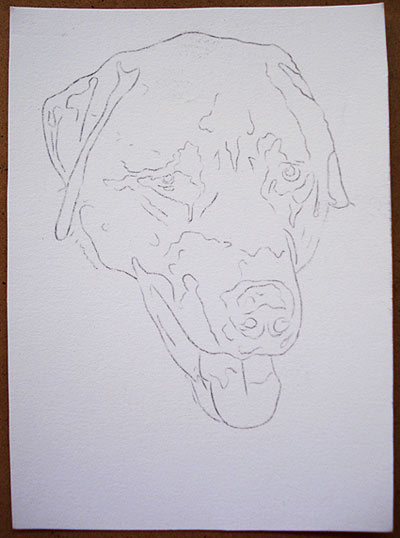 Dog tracing outline