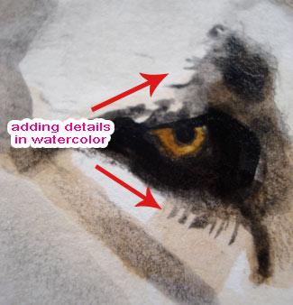 水彩画技术