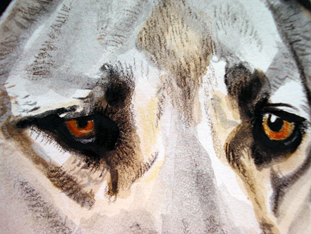 Close-Up Dog Painting
