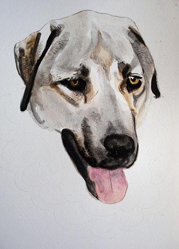 Dog Artwork in Progress by Thaneeya