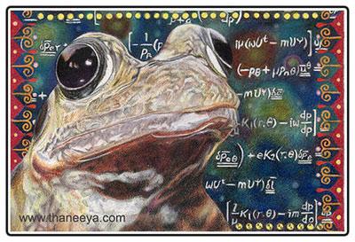 宇宙青蛙- 4英寸x 6英寸- Prismacolor彩色铅笔在纸上