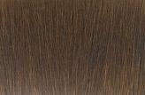 松鼠的头发