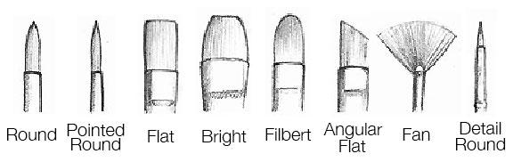 Paint Brush Shapes