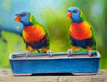 Drawing of Lorikeets, created with Prismacolor Colored Pencils