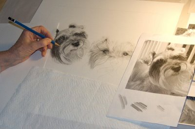 Doreen at work on a dog pencil portrait commission