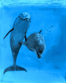 Dolphin Painting by Alan Minshull