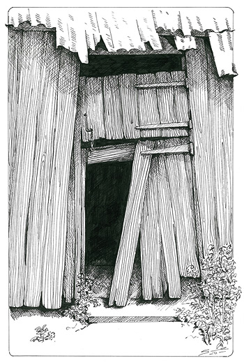 Shropshire Hen House . Pen & ink. 245x165mm. © Sue Pownall 2011 Click on the image above to view a larger version showing more detail.