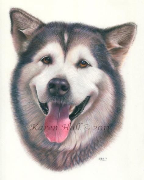 Realistic Dog Drawing by Karen Hull