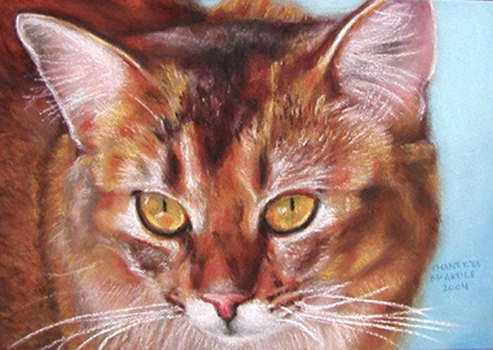 我用蜡笔画的猫画像