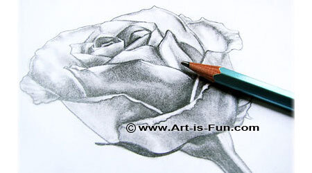 怎样画玫瑰