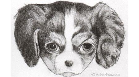 如何画一只小狗