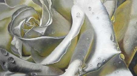 德尔莫斯·菲尔普斯的一幅白玫瑰油画