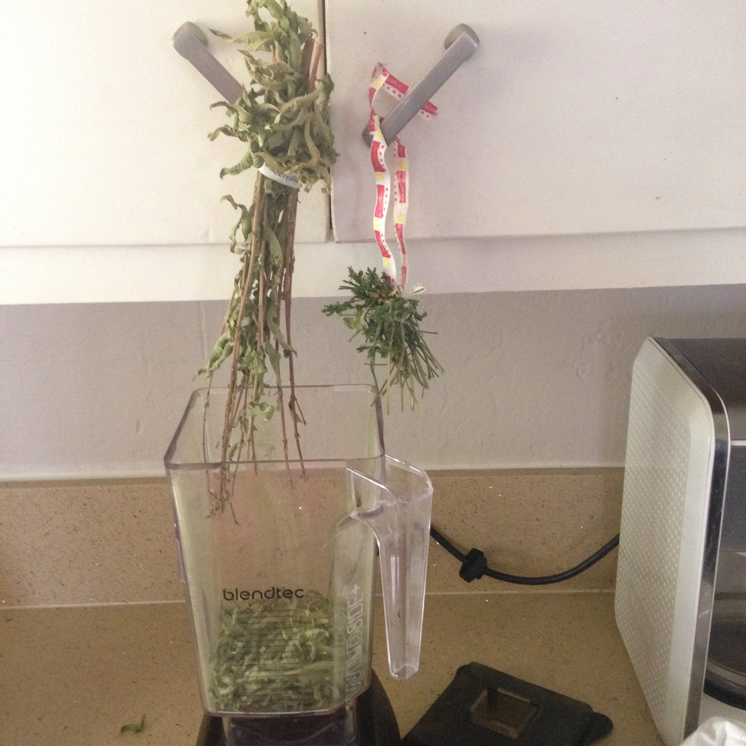 Drying Herbs at Home. DIY with www.goingzerowaste.com It's so easy, cheap, and zero waste!