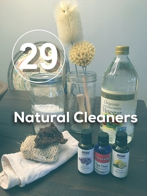 https://www.spaceandpause.com/30-day-zero-waste-challenge/29-natural-cleaners