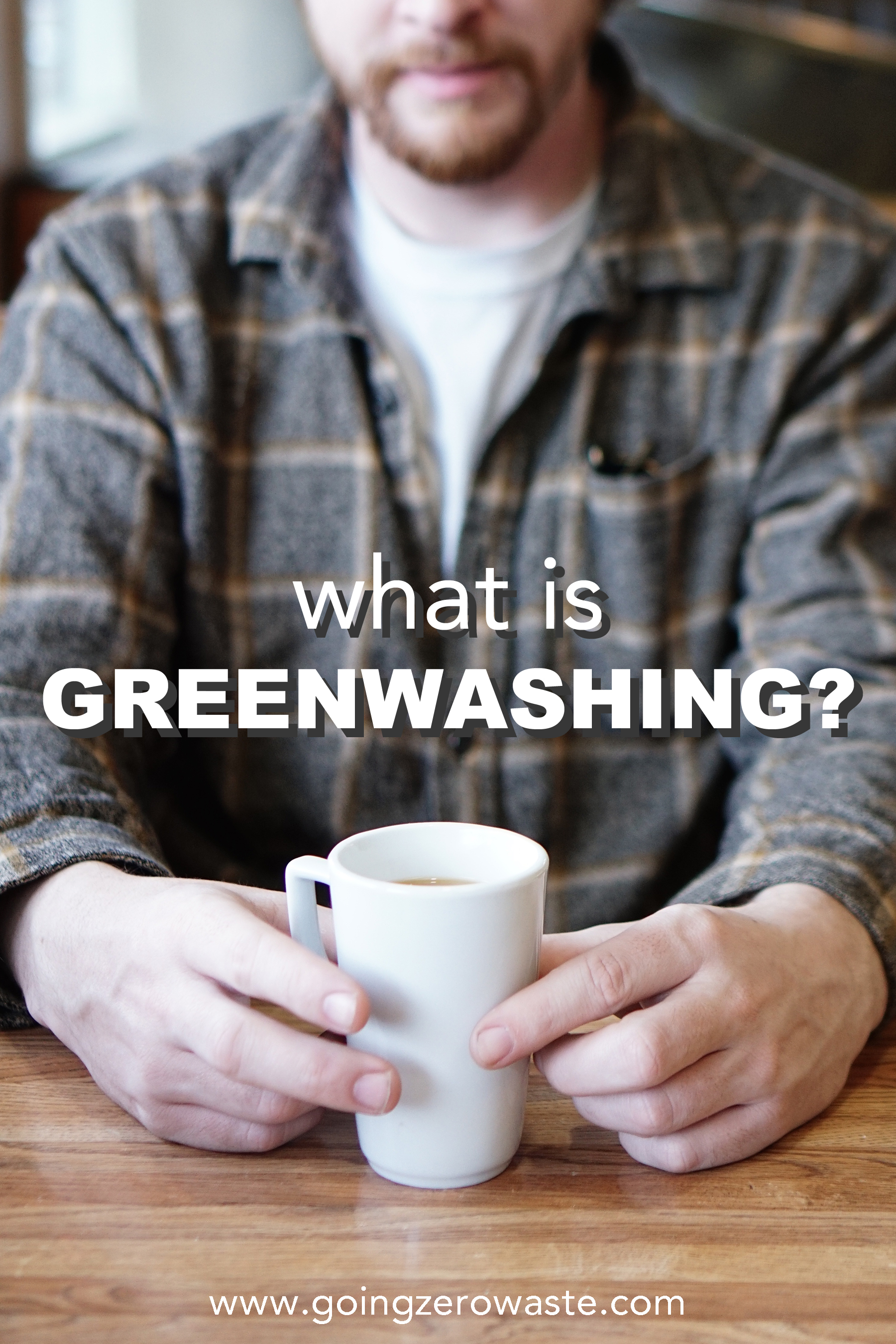 What is greenwashing from www.goingzerowaste.com