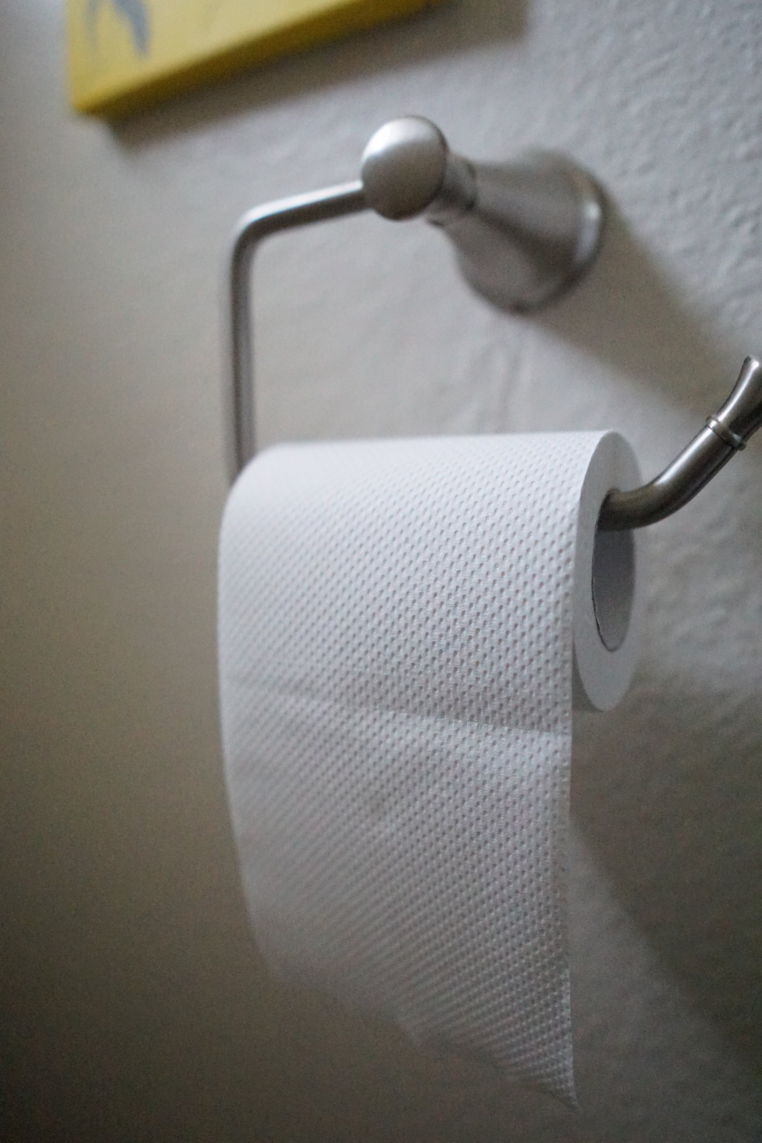 5 things I love about who gives a crap recycled toilet paper from www.goingzerowaste.com