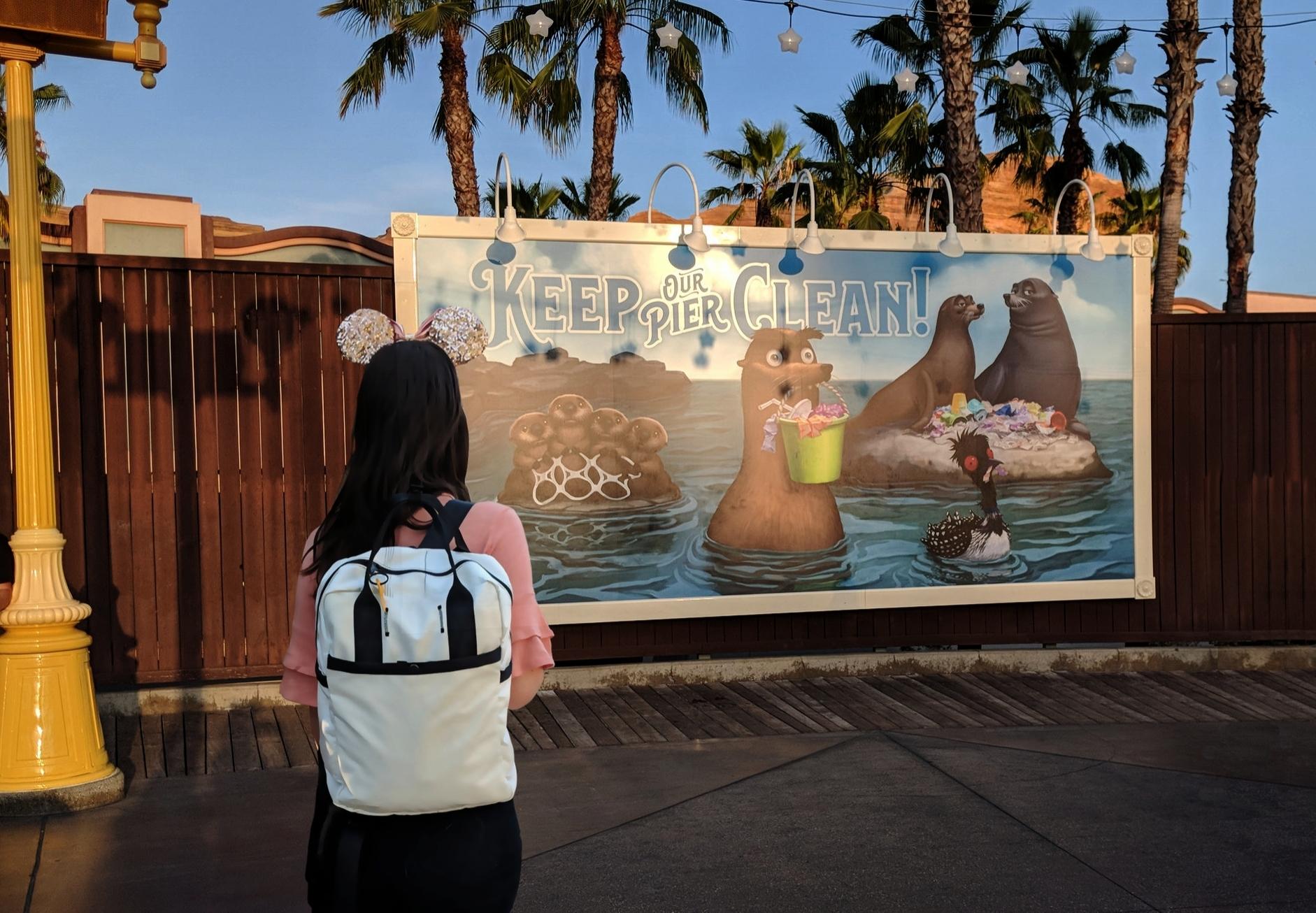 Zero waste at disneyland from www.goingzerowaste.com