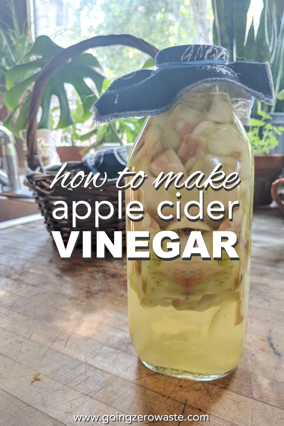How to make apple cider vinegar from scraps from www.goingzerowaste.com #apples #applecidervinegar #acv #fallrecipes #cookingwithscraps