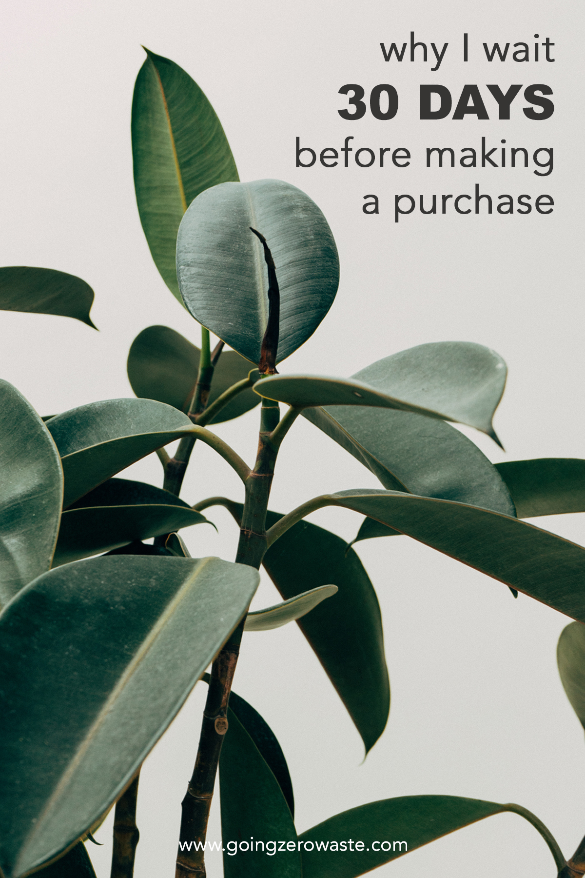 Why I wait 30 days before I make a purchase and you should to from www.goingzerowaste.com