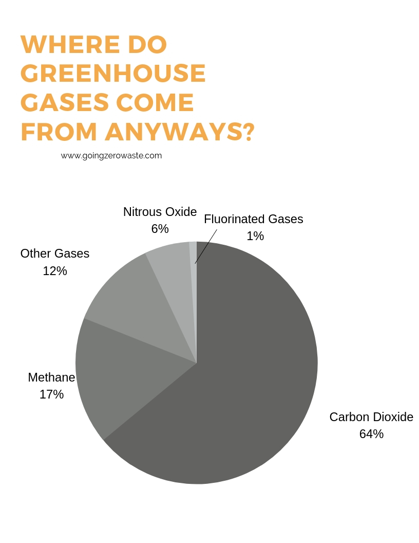 Where to buy carbon offsets and why you should from www.goingzerowaste.com #carbonoffsets #zerowastetravel #zerowaste