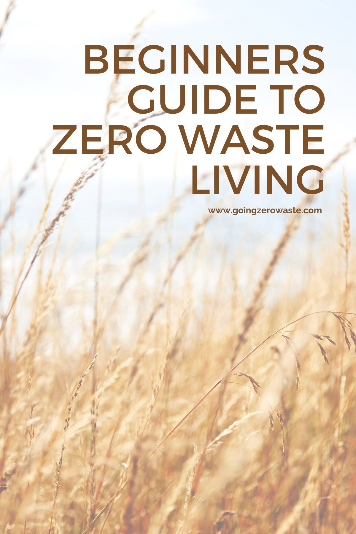 4 tips for starting a zero waste lifestyle and become a conscious consumer from wwww.goingzerowaste.com #zerowaste #ecofriendly #beginnersguide
