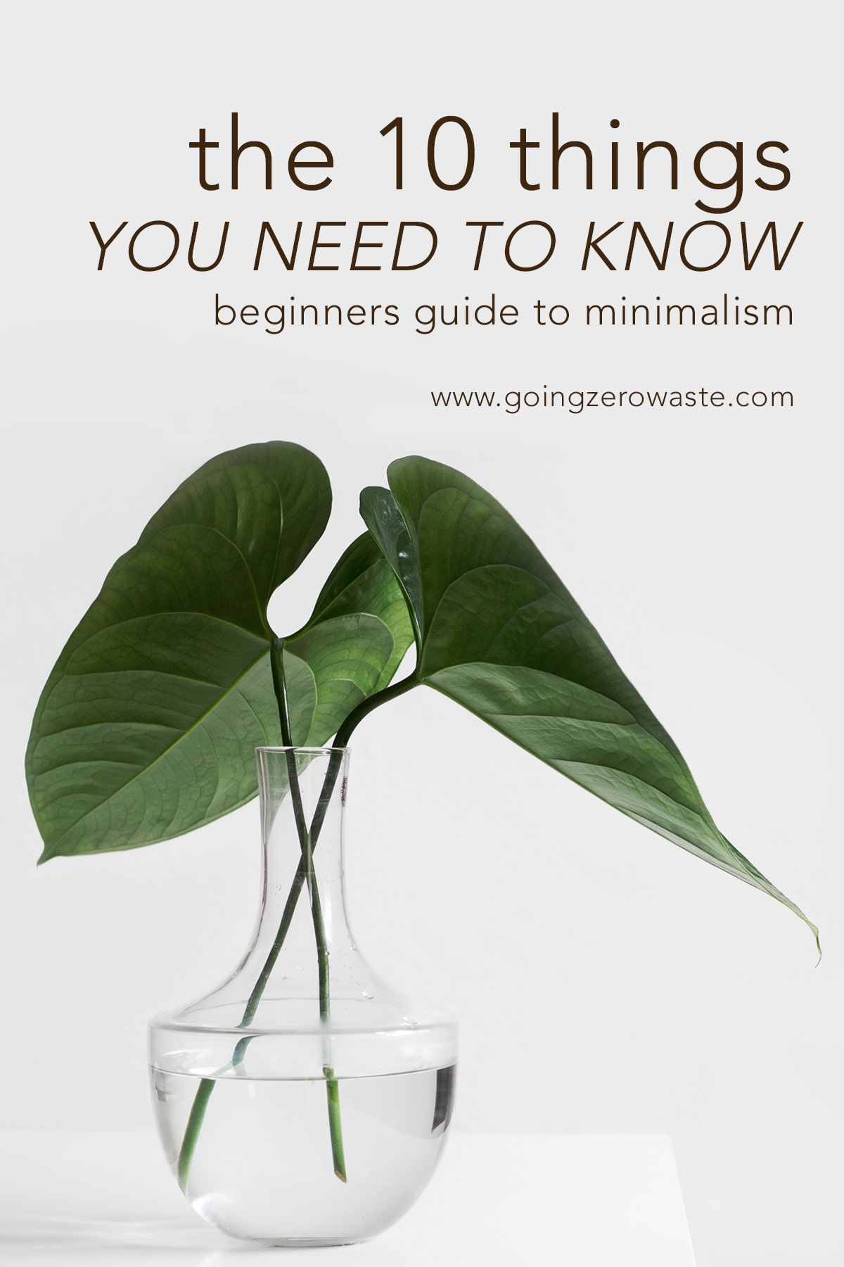 The 10 things you need to know a beginners guide to minimalism from www.goingzerowaste.com #minimalism #ecofriendly #sustainable #simpleliving #simplicity