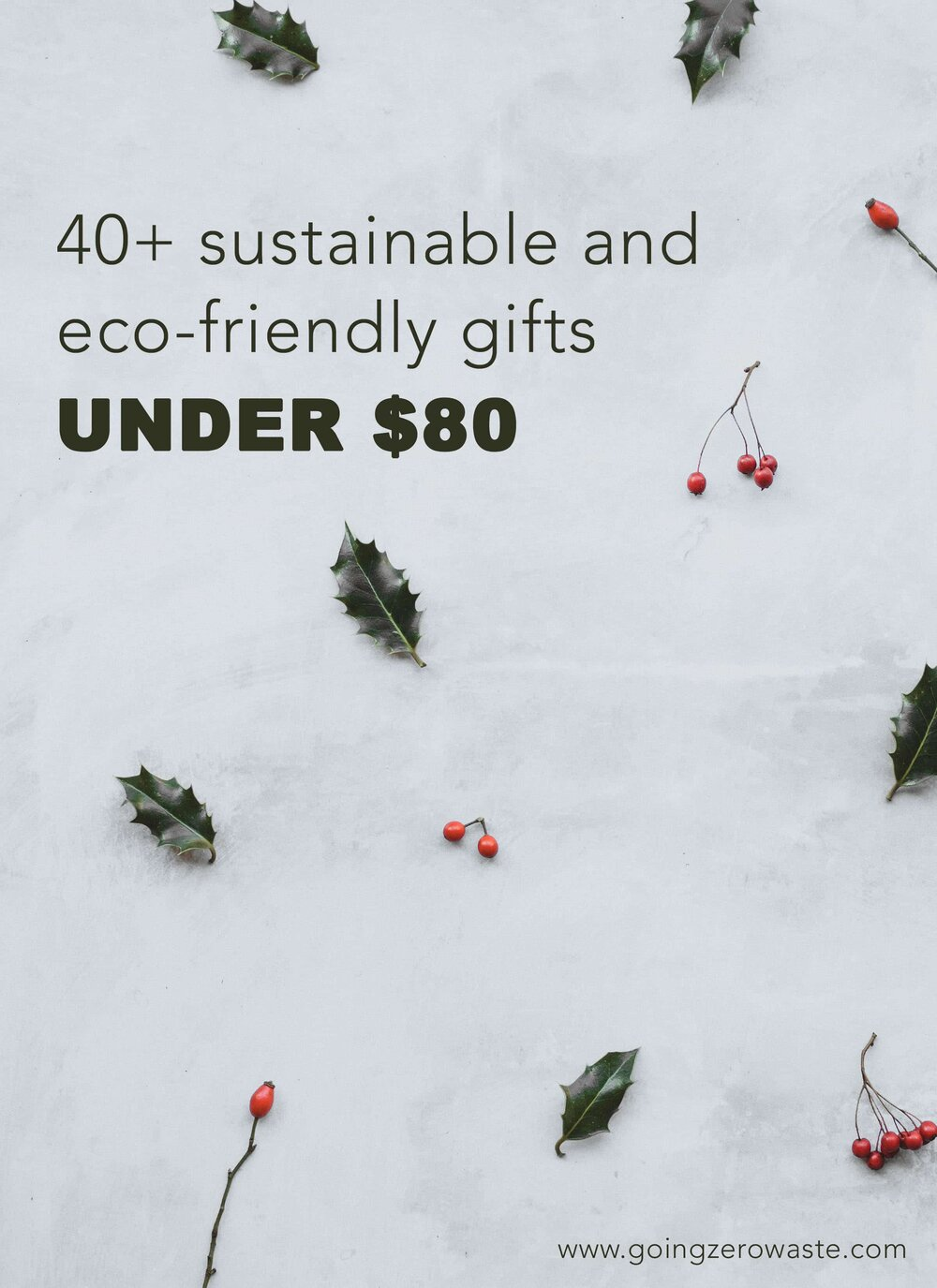 40+ sustainable and eco-friendly gifts under $80from www.goingzerowaste.com #stockingstuffer #stockingfiller #ecofriendly #sustainable #sustainablegifts #zerowaste #eco #ecogfits #giftguide #sustainablestockings
