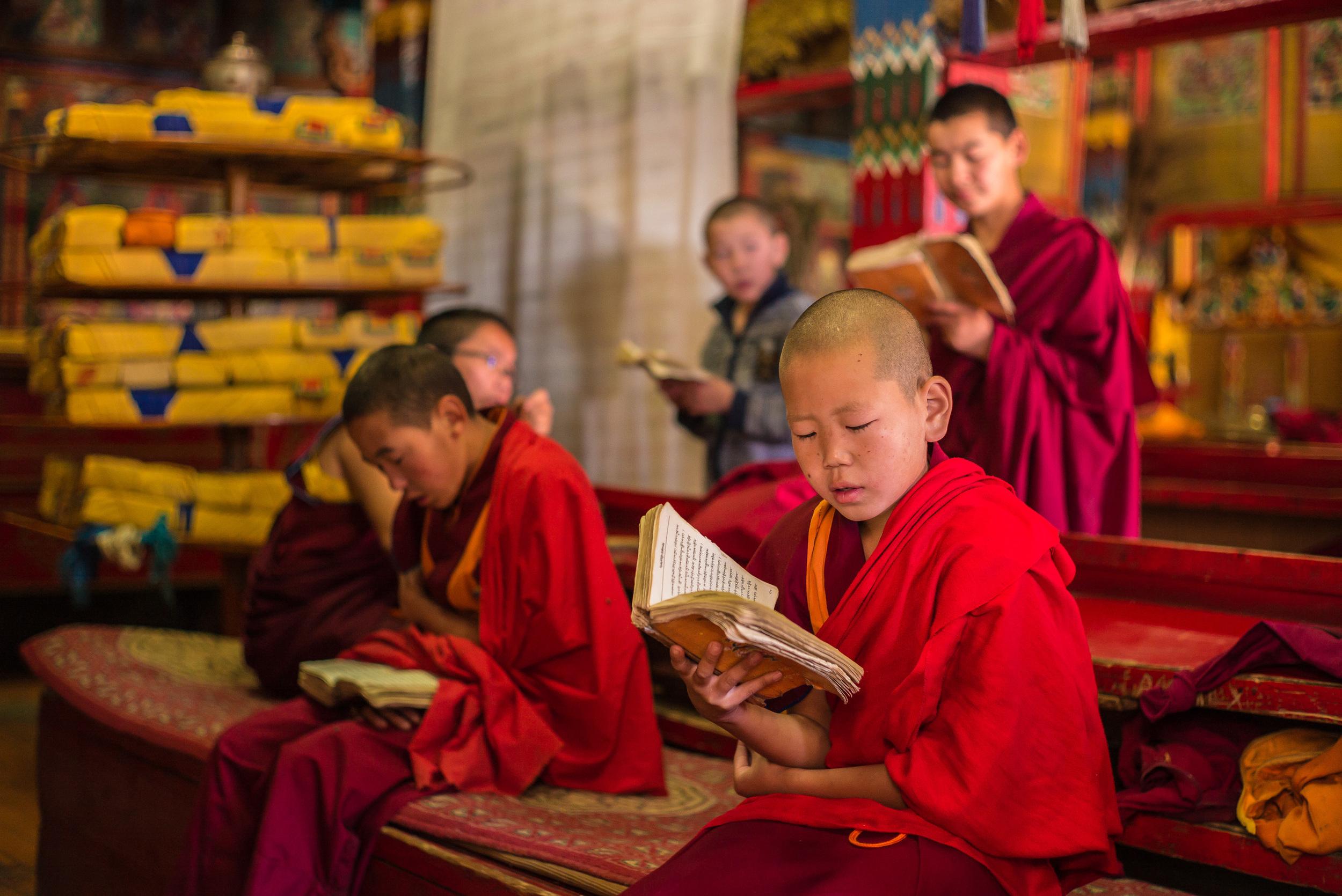 Monks reading Buddhist prayers