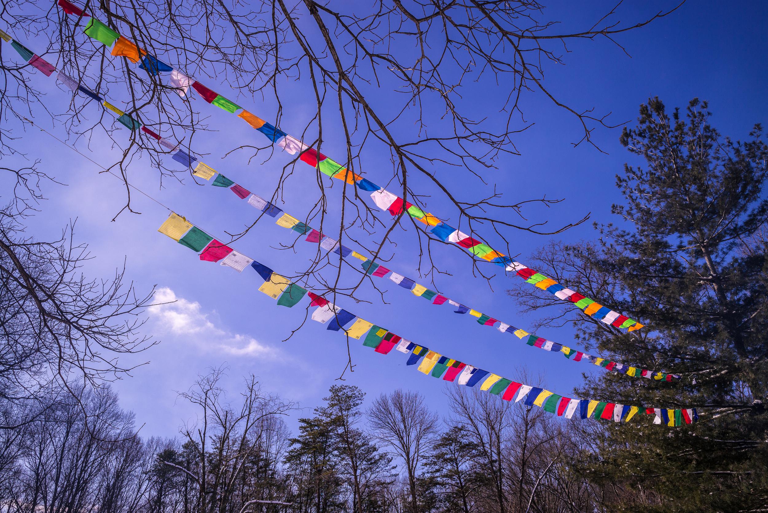 Prayer flags at TMBCC