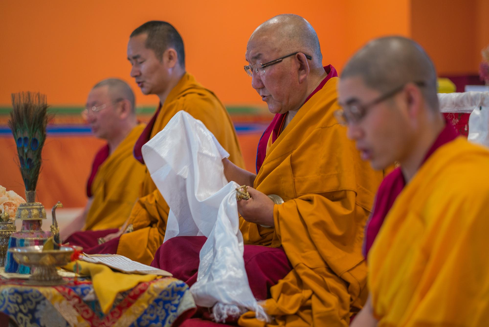 Arjia Rinpoche-12.jpg